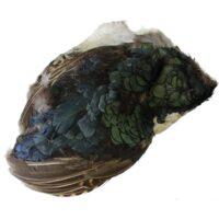 Скалп от фазан A. Jensen Amherst Pheasant Body Skin