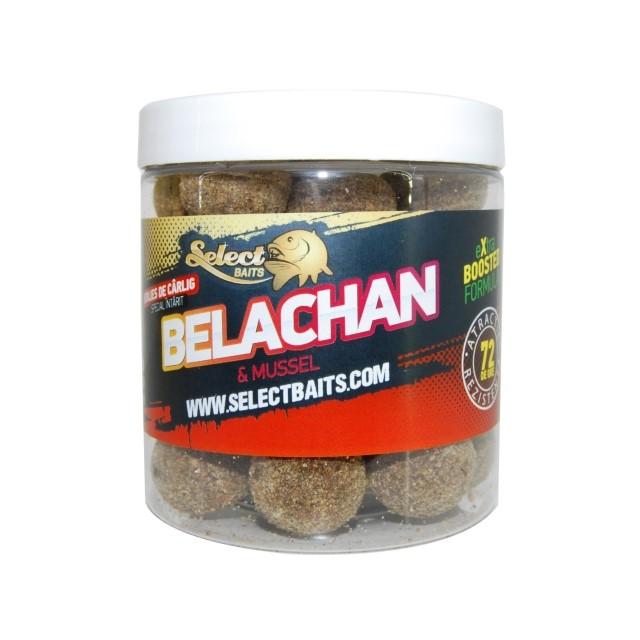 Протеинови топчета Select Baits Belachan Hardened