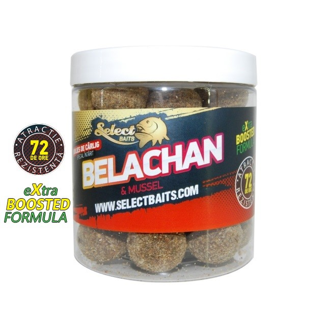 Протеинови топчета Select Baits Belachan Hardened