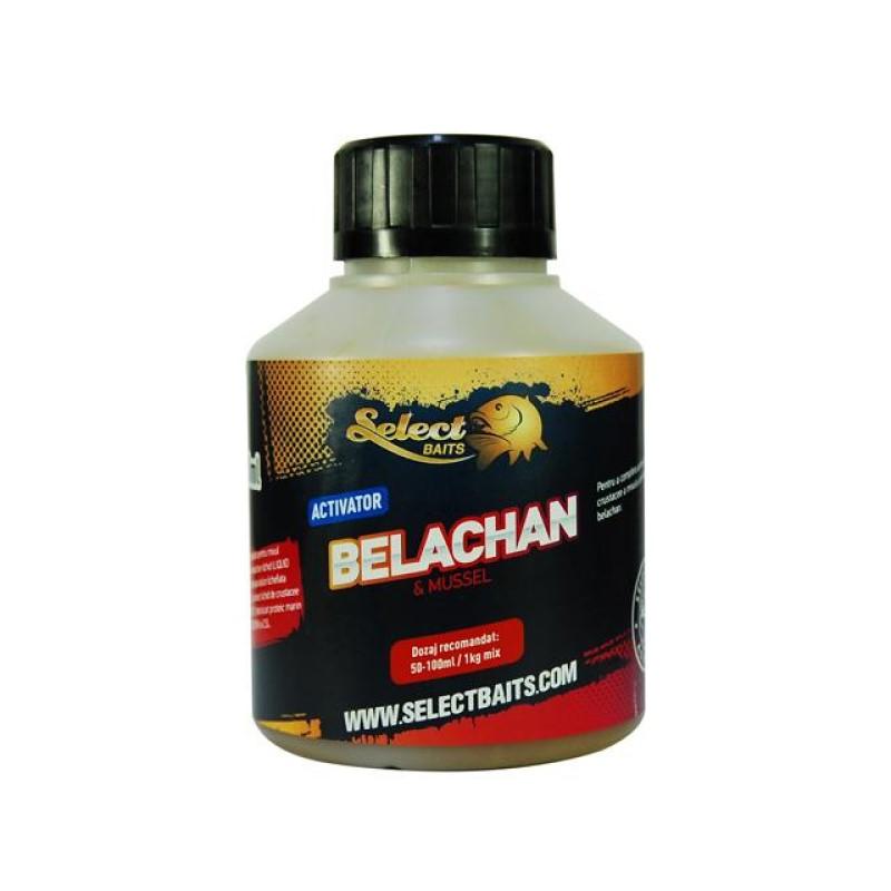 Активатор Select Baits Belachan 250ml